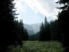 Cesta do doliny Miętusia