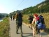 Cesta na Alkazar